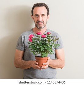 Senior man holding roses flowers on pot with a confident expression on smart face thinking serious
