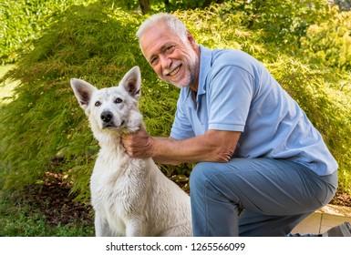 Senior man playing with White Swiss Shepherd dog in the garden.