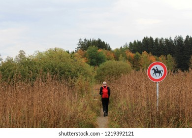 Senior man with a red backpack is hiking with nordic walking sticks trough moorlands, Allgäu, Bavaria