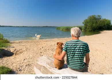 Senior man sitting at tree trunk with his dog in landscape with river