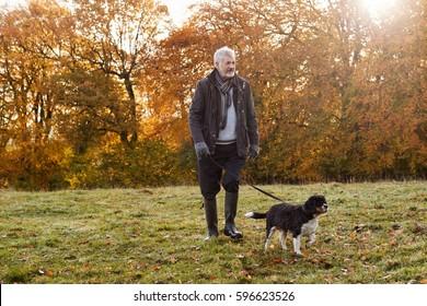 Senior Man Taking Dog For Walk In Autumn Landscape