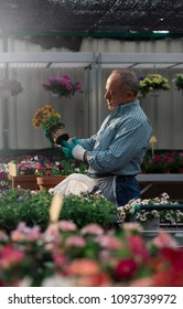 Senior man transplanting plants.