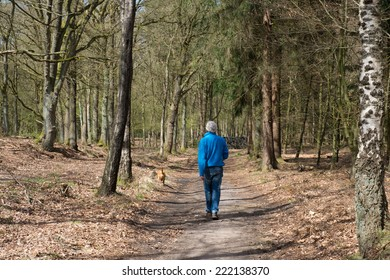 Senior man walking the dog in spring forest