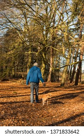 Senior man walking the dog in winter forest