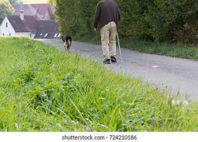 senior man with walking stick and german shepherd dog beside on a september evening in fall of south germany countryside