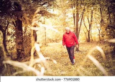 Senior man walking trough park.