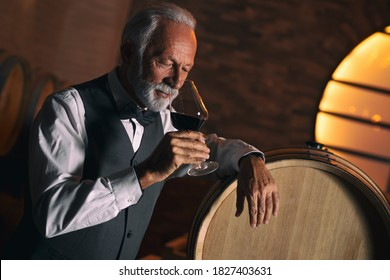 Senior man who could be a winemaker, a sommelier, a connoisseur or simply a wine lover, holds up a glass of red wine and sniffs the bouquet appreciatively. Black background with copy space.