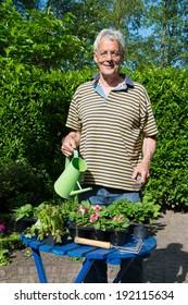 Senior man is working in the garden