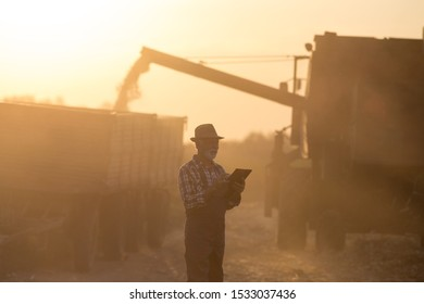 Senior man writing notes about yield in front of combine harvester loading trailer with crop at sunset
