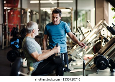 Gym exercise and fitness equipment s manufacturers suppliers in