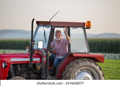 Senior old man driving small tractor in field and waving hand