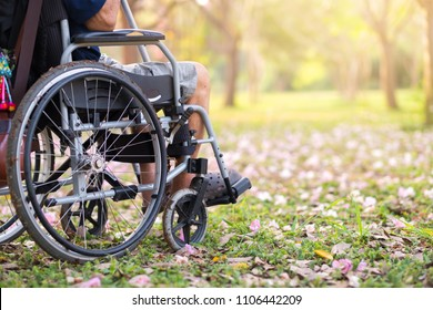 Senior on wheelchair in garden