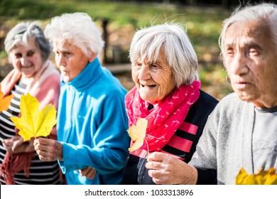 Senior people in park together