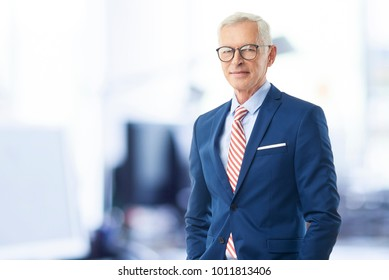Old man in suit images stock photos vectors shutterstock a senior sales director businessman looking at camera and smiling while standing at the office publicscrutiny Images