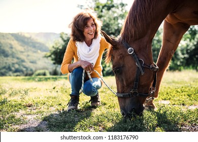 A senior woman crouching and a horse grazing by a stable.