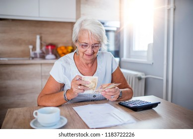 Senior woman doing finances at home.  Happy senior woman with calculator and bills counting euro money at home. Business, savings, annuity insurance, age and people concept