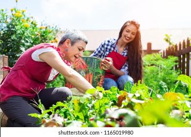 Senior woman gardening on beautiful spring day