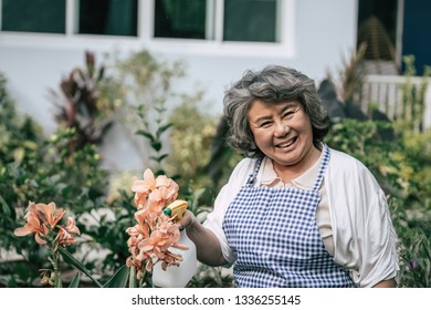Senior woman gathering flowers in garden