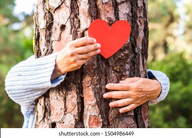Senior woman hand in the woods puts a heart shape on the trunk to tell us that every tree has a heart. Earth day concept. Together save the planet from deforestation