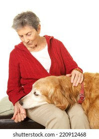Senior Woman in her eighties and her golden retriever on a white background.  She is giving him a treat