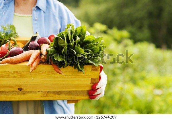Senior woman holding box with vegetables