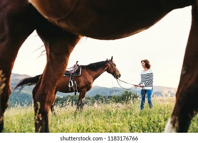 A senior woman holding a horse by his lead on a pasture.