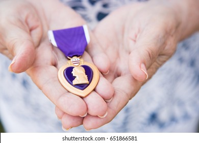 Senior Woman Holding The Military Purple Heart Medal In Her Hands.