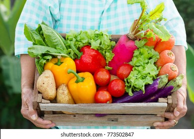 Senior woman and many different vegetable on hand. Fresh vegetables just picked from her biological garden there are truly and cultivated by her care. Healthy eating, Vegetarian, Gardening and Nature