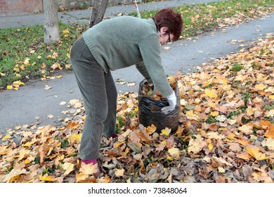 Senior woman picking leaves in a garden