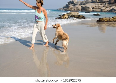 Senior woman playing with her Labrador retriever dog on the beach on a bright, sunny day