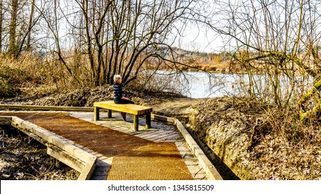 Senior Woman resting on a wooden bench hiking the trail from Poplar Bar to Two-bit Bar in Glen Valley Regional Park near Fort Langley, British Columbia, Canada on a nice winter day