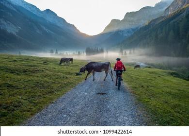 senior woman, riding her electrical mountain bike in the Karwendel area, Tirol,Austria