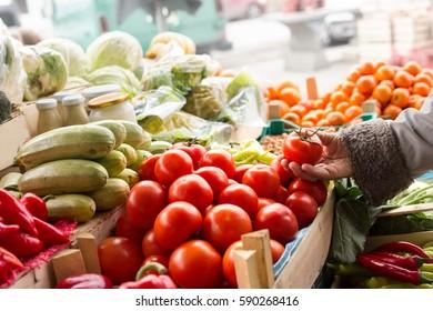Senior woman shopping for tomato on farmers market