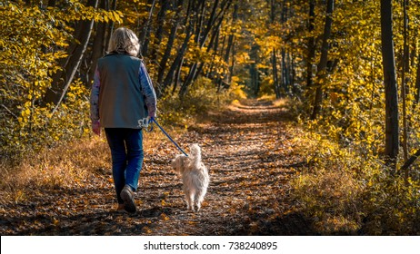 Senior woman walking a dog on a forest trail during a late afternoon in autumn