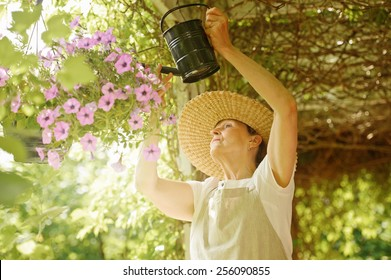 Senior woman waters the flowers in a hanging pot. She is standing under a vine covered pergola. Digital filters and flare.