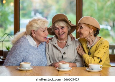 Senior women at table smiling. Cheerful ladies in cafe. Friends since childhood.