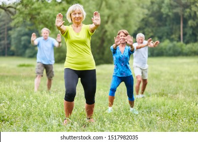 Seniors do Qi Gong or Tai Chi exercise in a wellness course in nature