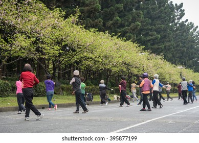 Seniors are exercising in a park with tai chi.