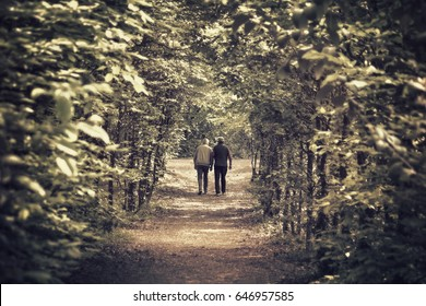 seniors walking in the wood, lack of grandfathers concept