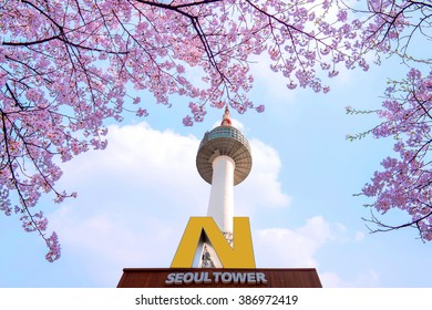 SEOUL - APRIL 9 : N Seoul Tower  and Cherry blossom in Spring.Photo taken on April 9,2015 in seoul,South Korea.