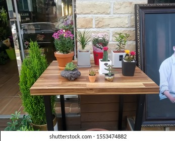 Seoul, korea - 6 November 2019: Flower plant on the table