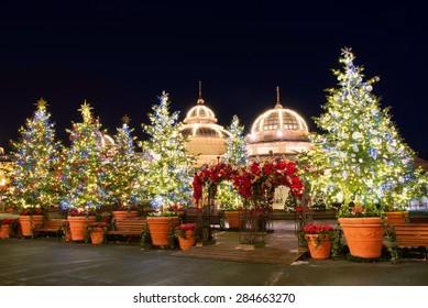 Christmas In Korea.Korea Christmas Images Stock Photos Vectors Shutterstock