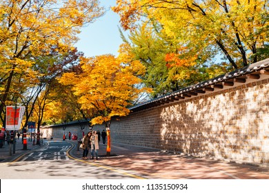 Seoul, Korea - November 9, 2016 : Deoksugung stonewall walkway with autumn maple