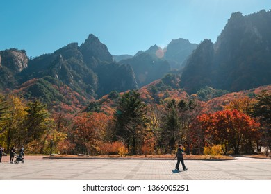 SEOUL, KOREA-2 DECEMBER 2018: Tourist roam about the forest to sight seeing colorful tree in autumn season in Seoraksan National Park in south Korea