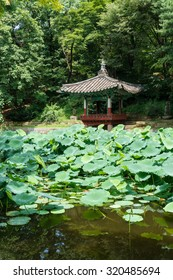 SEOUL, SOUTH KOREA - CIRCA AUGUST 2015: Pagoda above the lotus pond in the Secret garden of Changdeokgung Palace, Seoul, South Korea, circa 2015