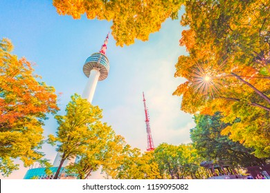 SEOUL, SOUTH KOREA - July 29, 2018: N Seoul Tower is located on Namsan Mountain in central Seoul. and autumn maple tree mountain in Korea