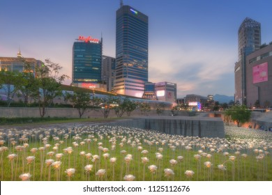 Seoul, South Korea - June 24, 2018 : The LED Rose Garden at Dongdaemun Design Plaza (DDP) has transformed an open space into a beautiful night garden. Popular among the tourist
