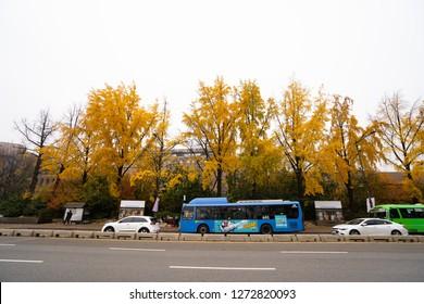 SEOUL, SOUTH KOREA - NOVEMBER 11, 2018 : Autumn in streets in Seoul city