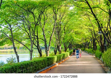 Seoul, South Korea - October 14, 2017: Residents and tourists walking along scenic green park around lake at downtown. The park is a popular recreational gathering place of Seoul.
