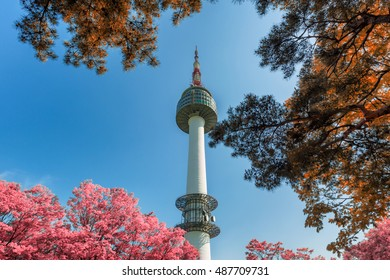 Seoul Tower and autumn maple leaves at Namsan mountain in South Korea.
